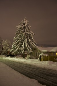 reno_snow