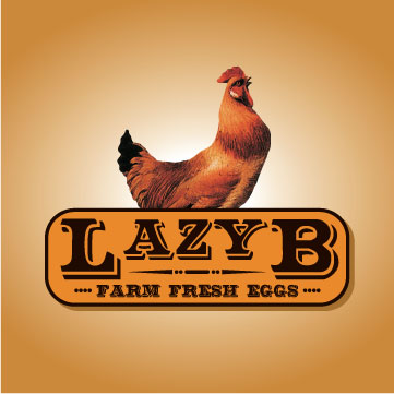 Lazy B